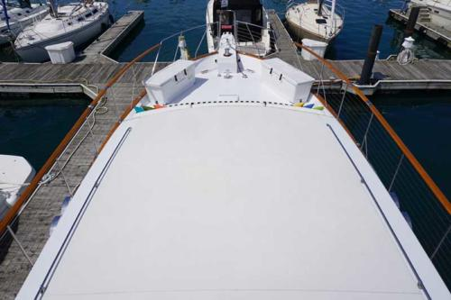 Chicago Private Yacht Rentals  Padded Sun-Deck